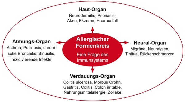 allergischerformenkreis